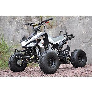 Outback 110cc ATV med revers