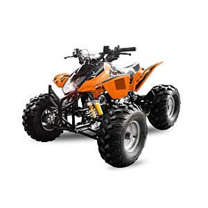 125cc Grizzly Sports ATV
